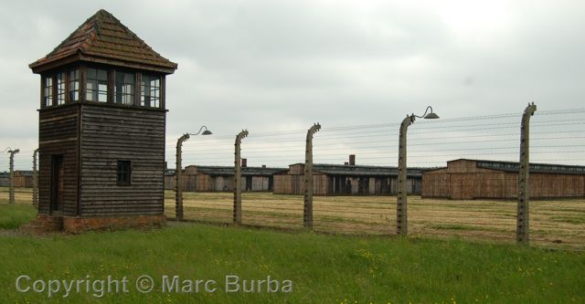 auschwitz laurence rees