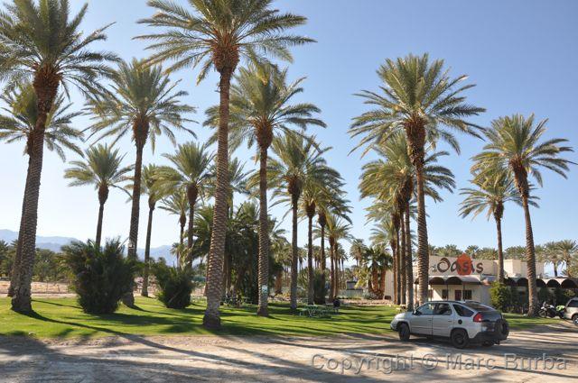 Salton Sea A Travel Journal